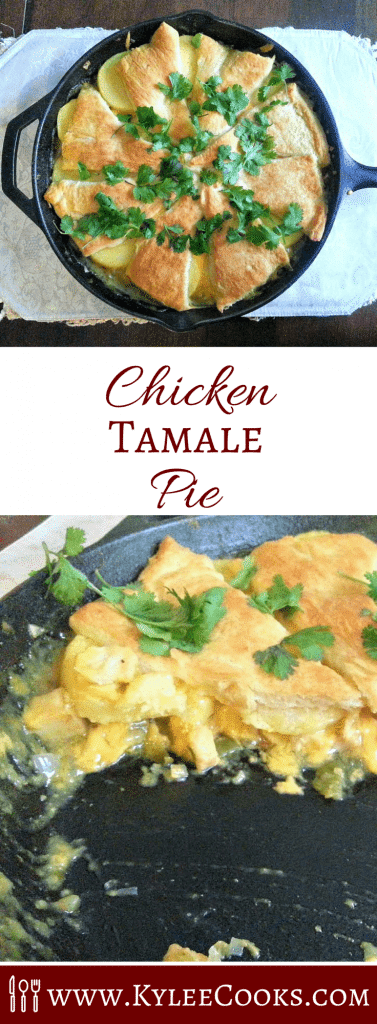 A fabulously different dinner, meet the chicken tamale pie, combining the flavors of a tamale, with some good old American convenience!