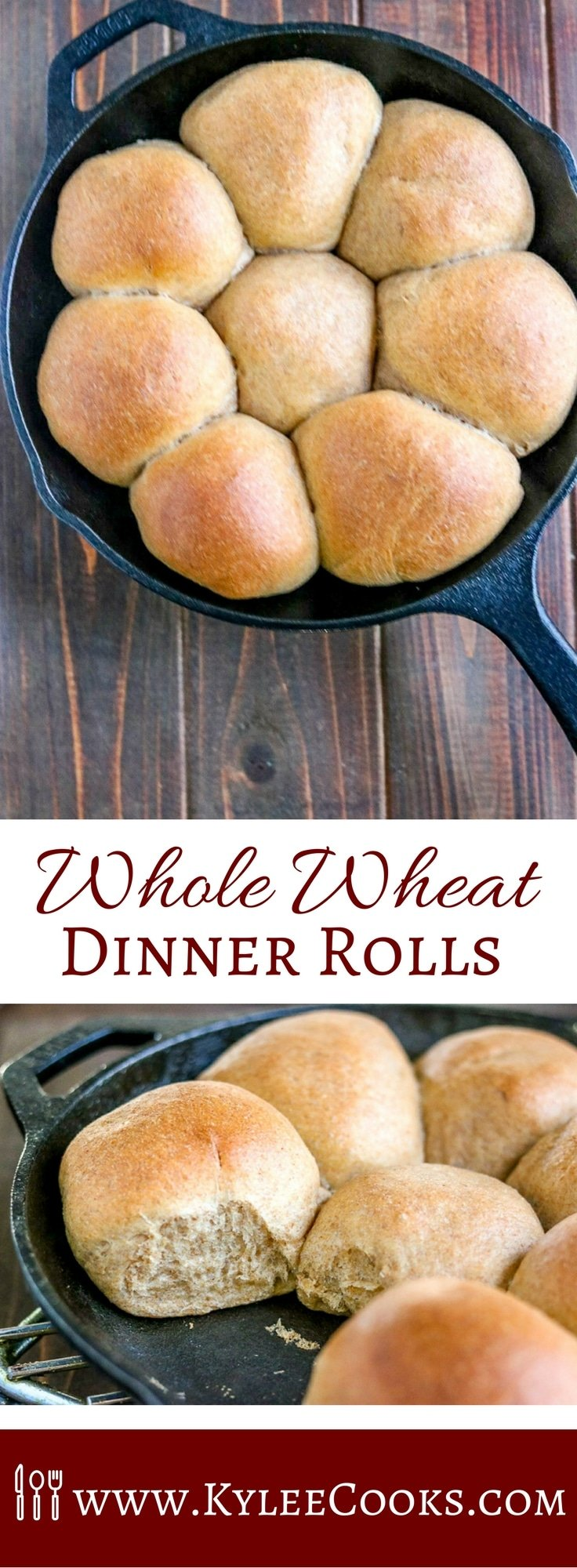 Quick and easy to make, these deliciously soft Whole Wheat Dinner Rolls make the perfect amount for your family! They make a hearty side to any dinner. Yum!