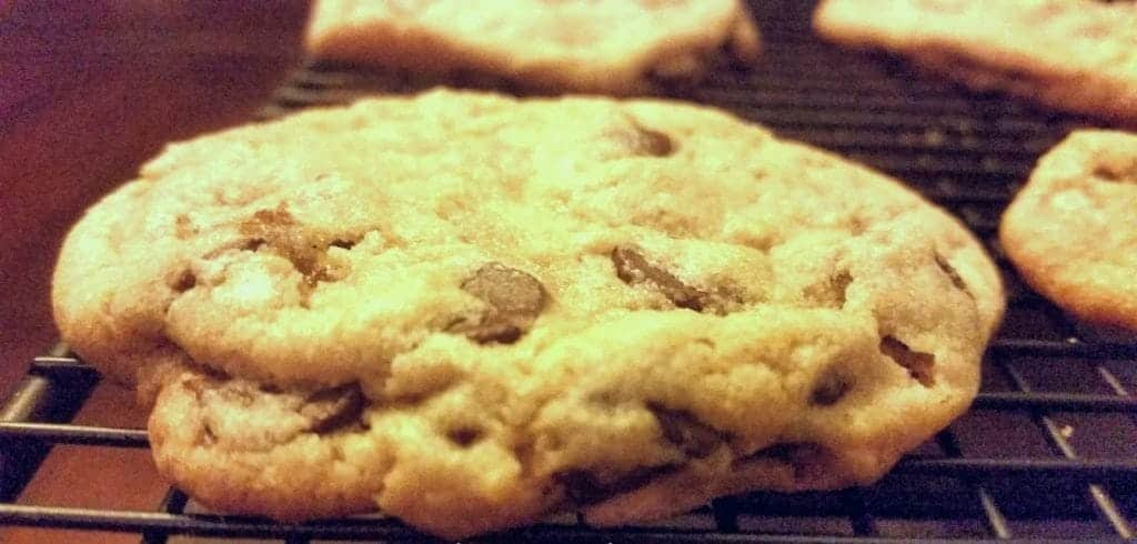 chocolate chip cookie - old recipe!