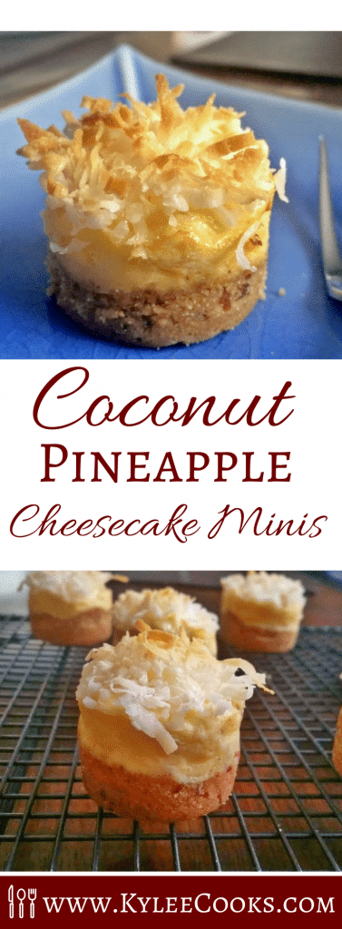 With pecans in the crust, sweet flavor in the creamy pineapple cheesecake layer, and the coconut on top completing the deliciousness... oh MY.
