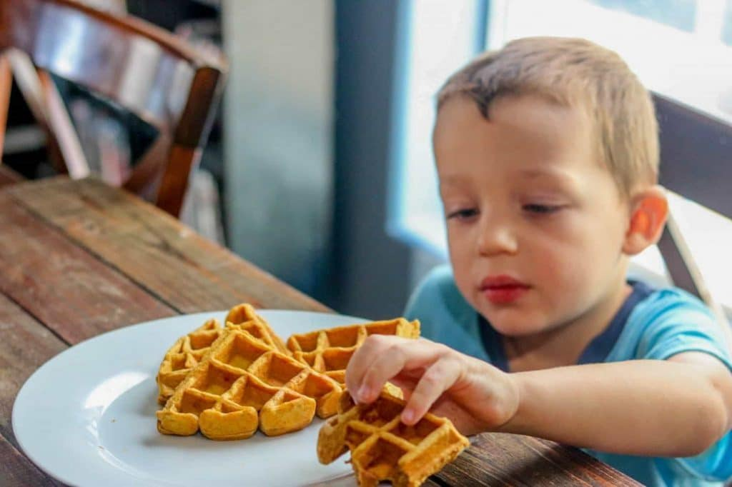 Child picking up wedge of pumpkin spice waffle with his hand.