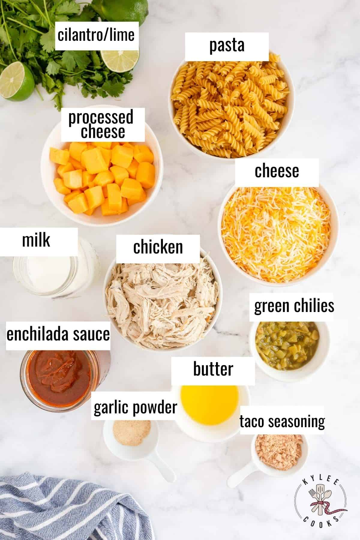 ingredients used in making enchilada pasta laid out and labeled
