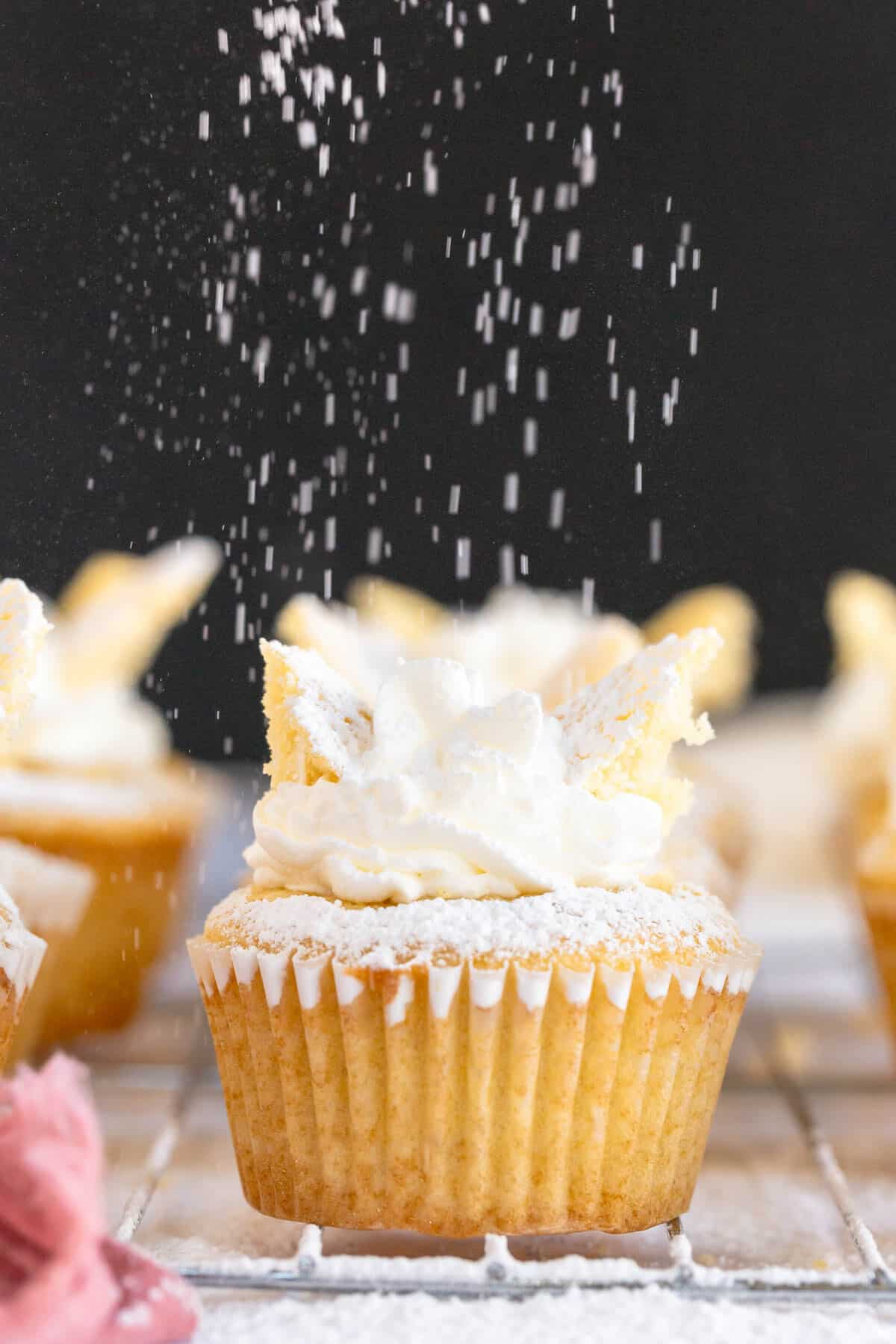 powdered sugar dusting over a cupcake