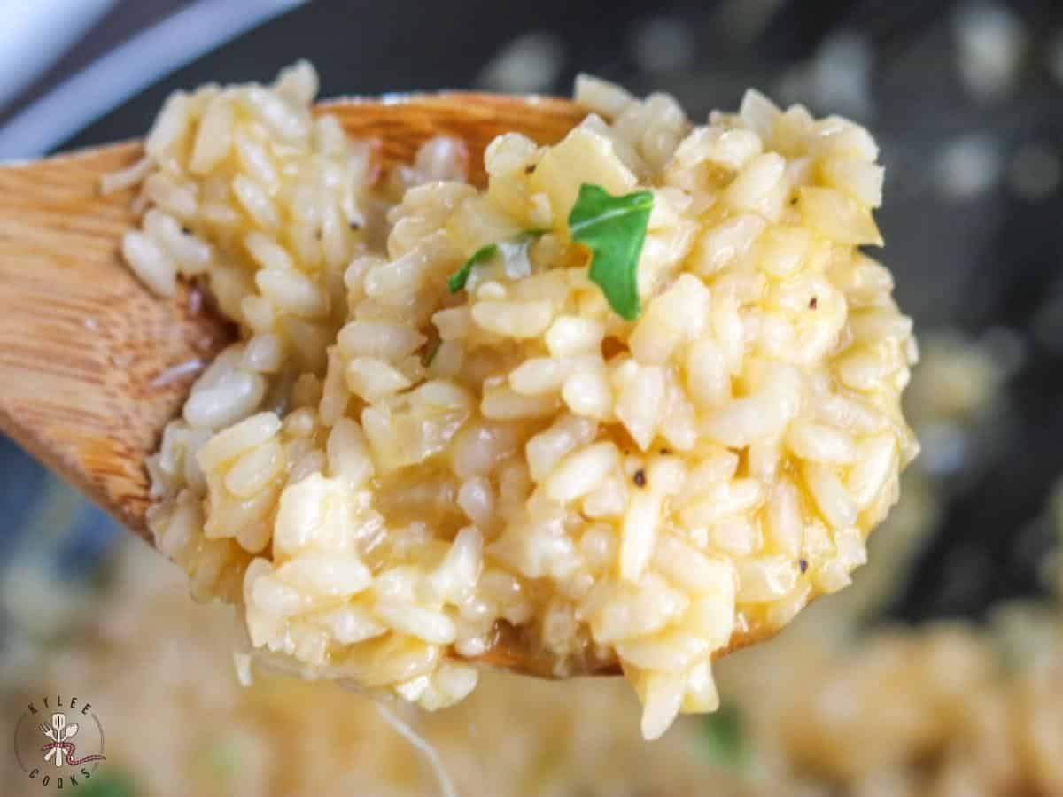 spoonful of risotto