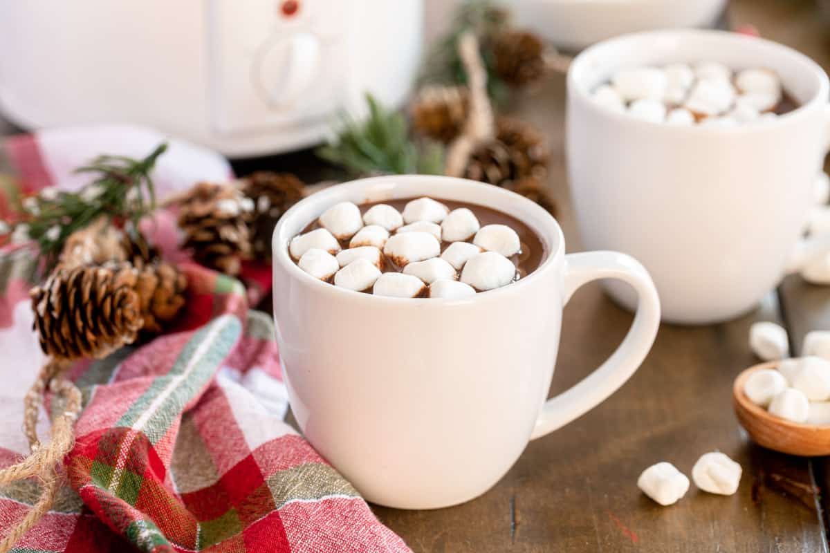 white mug of hot chocolate with winter decorations