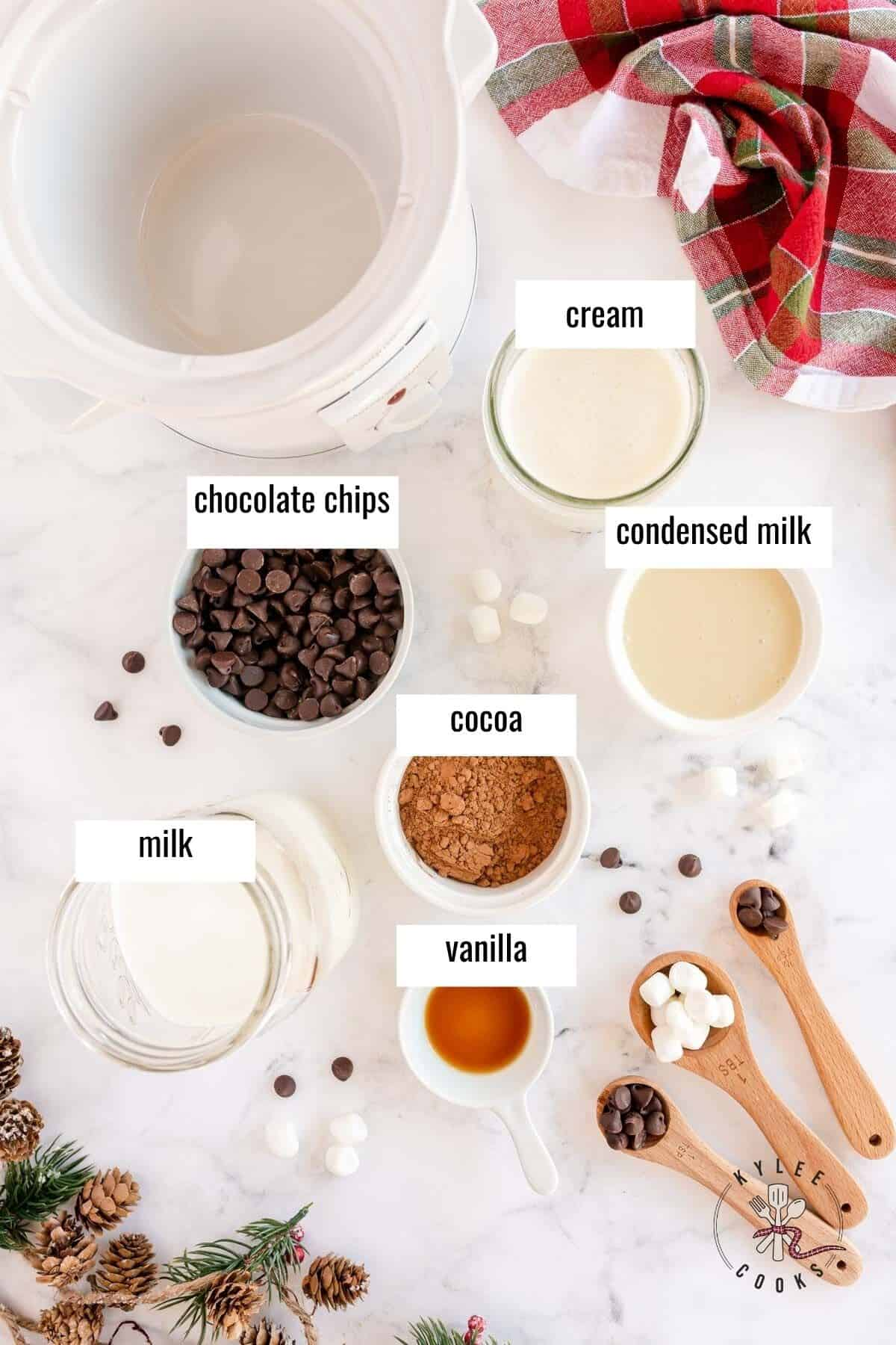 ingredients to make crockpot hot chocolate laid out and labeled