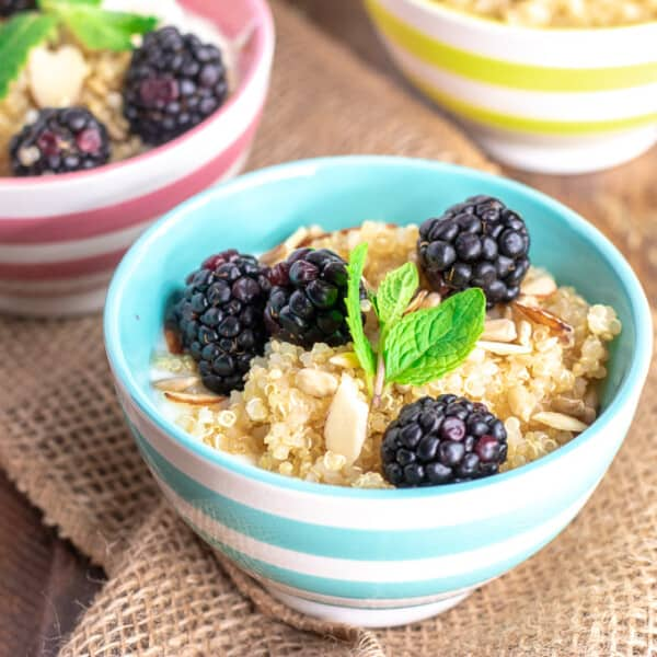 quinoa in a bowl with yogurt and blackberries
