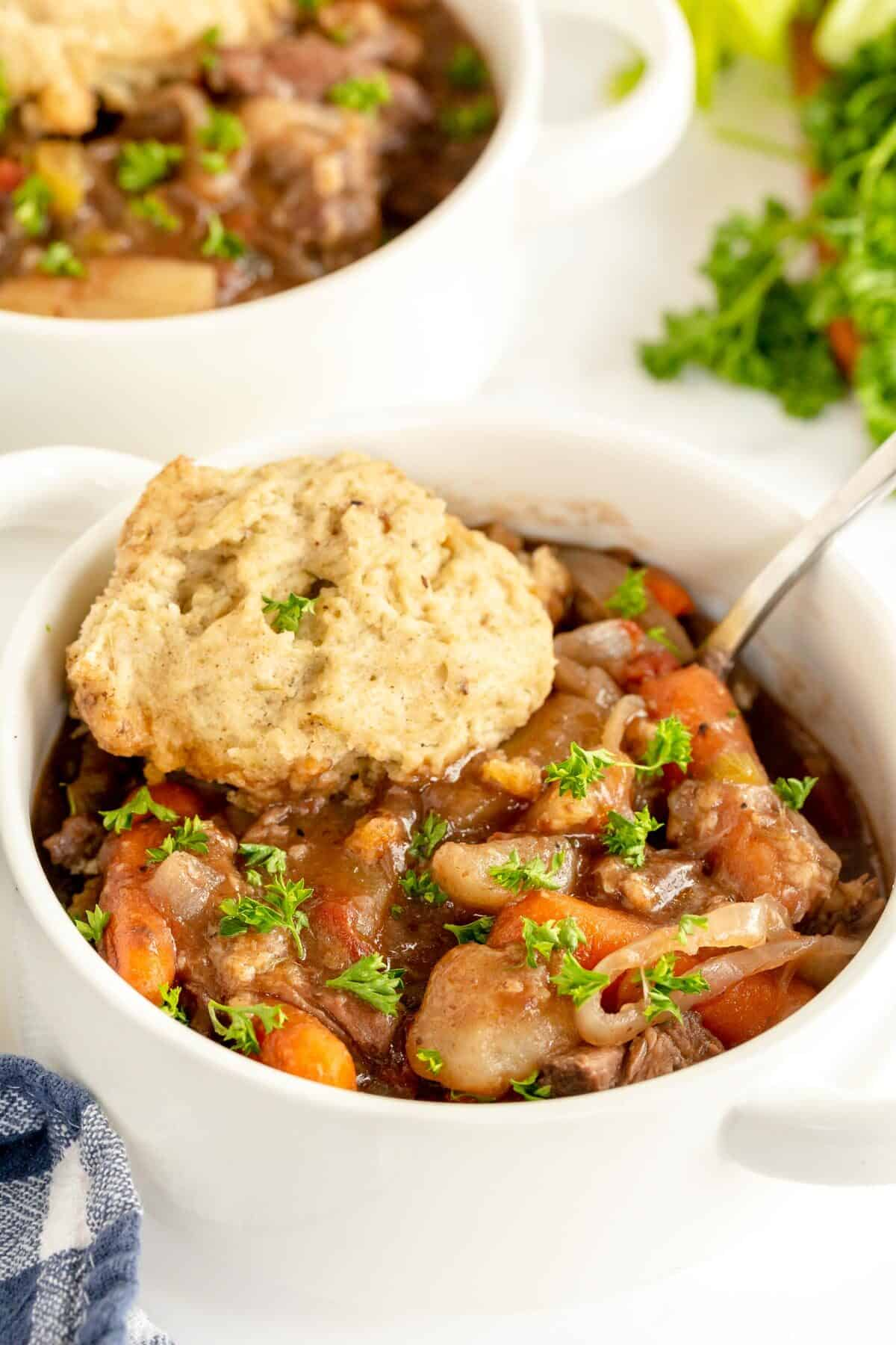 beef stew with dumplings in a white bowl