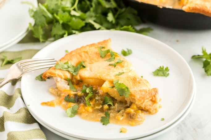 Chicken tamale pie on a white plate sprinkled with cilantro