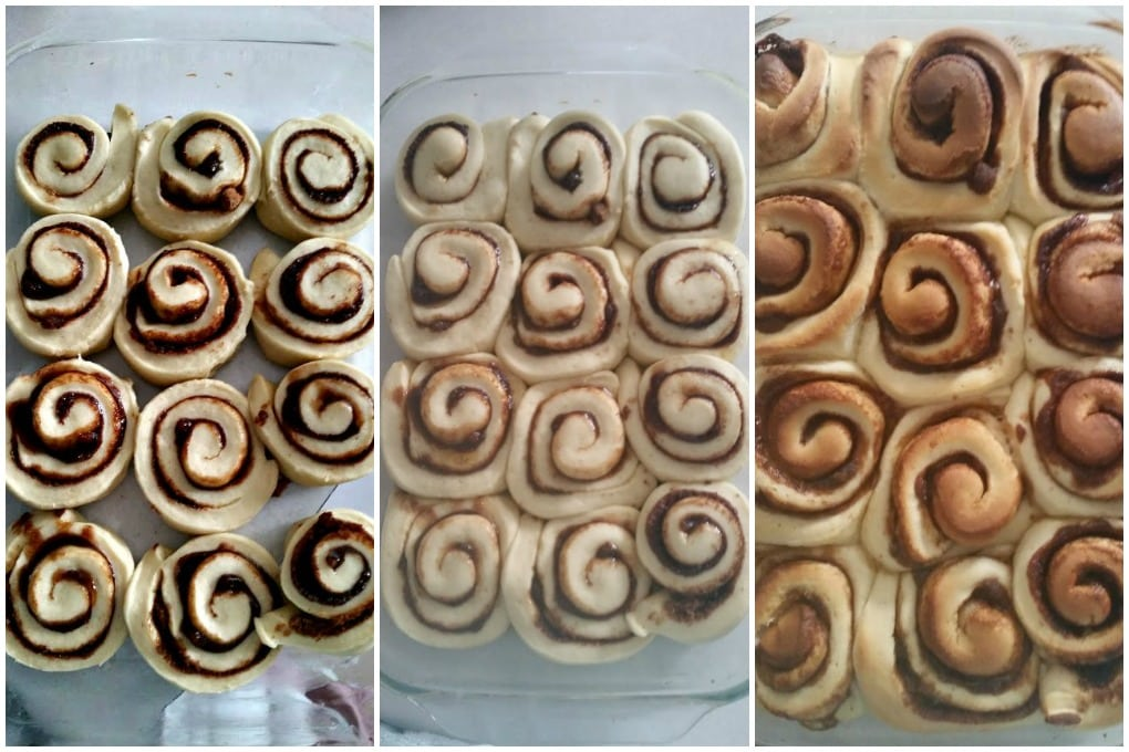 Cinnamon Roll Dough stages of rise