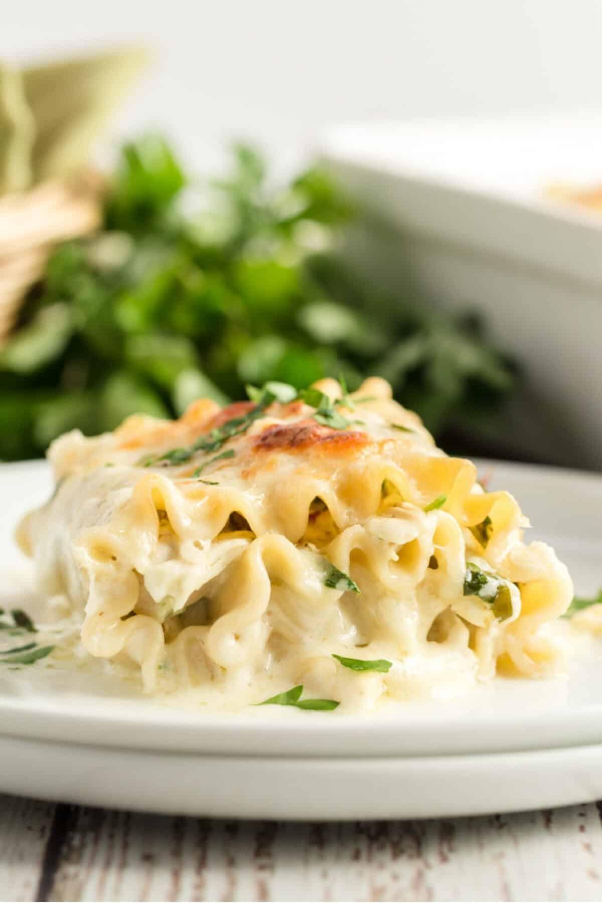 florentine lasagna roll ups on white plates
