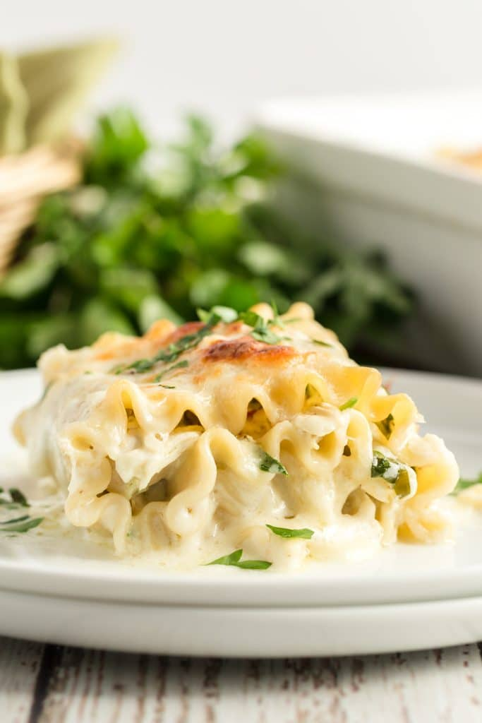 Florentine Chicken Lasagna Roll Ups on a white plate with parsley