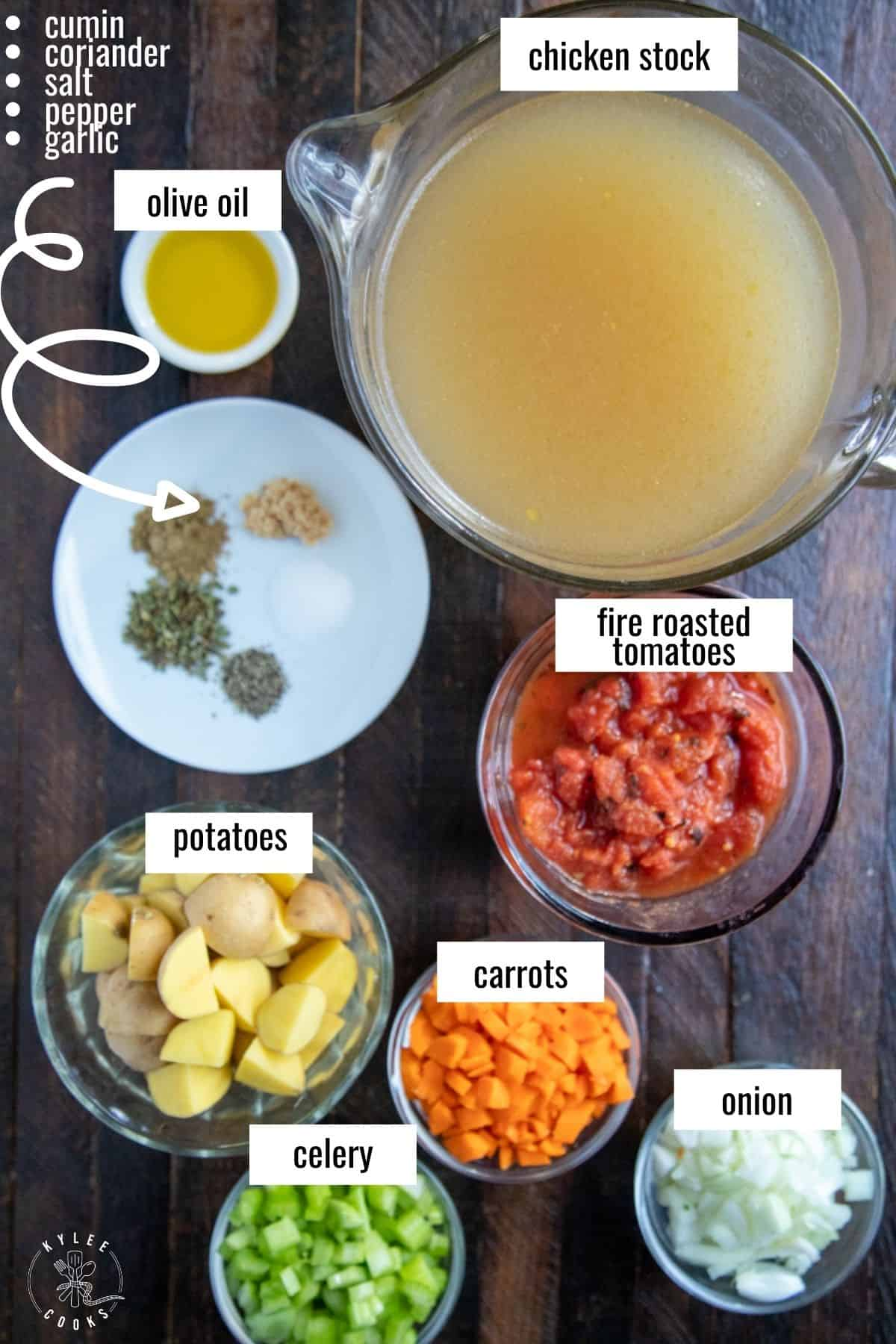 ingredients to make the soup base for albondigas laid out and labeled