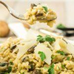 a bite of mushroom risotto