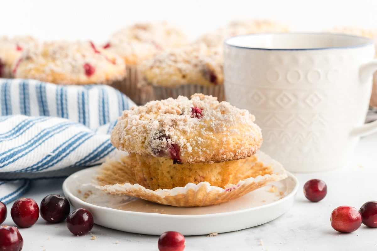 cranberry muffin on a white plate