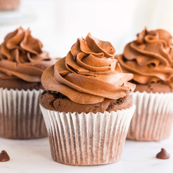 chocolate cupcakes with frosting
