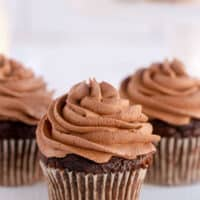 Chocolate cupcake with chocolate frosting swirled on top