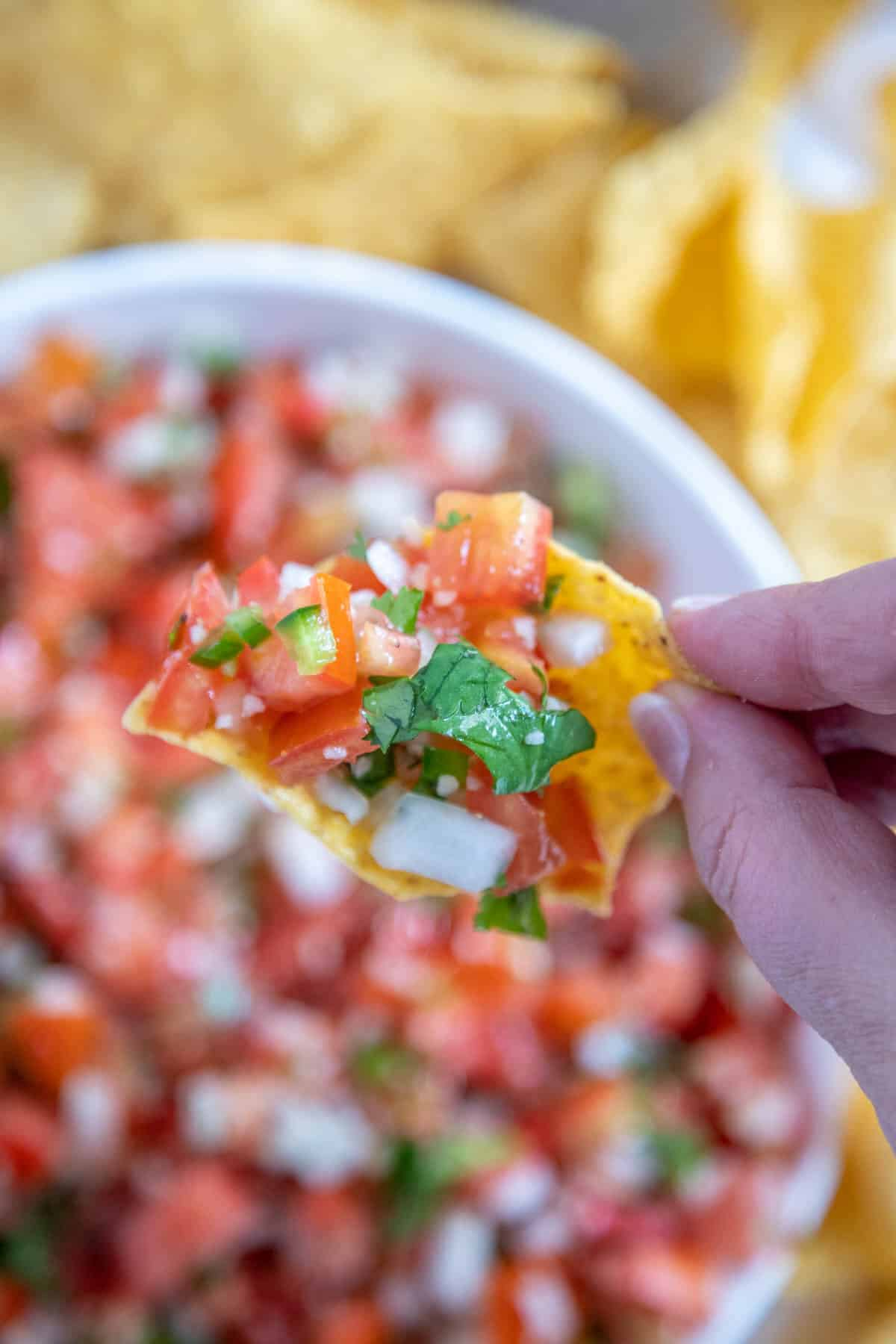 close up of pico de gallo on a tortilla chip